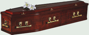 Traditional style coffin